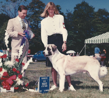1989 with ASDCA Champion Clearlake Early Warning, Group winning