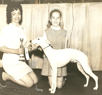 1968 Elyse winning Juniors with a Whippet.